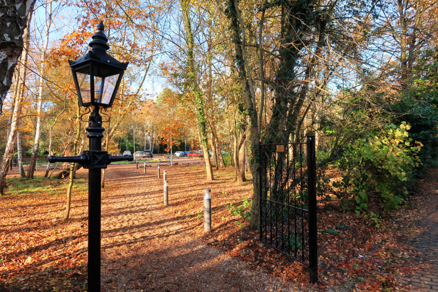 Lamp post Kinema in the Woods