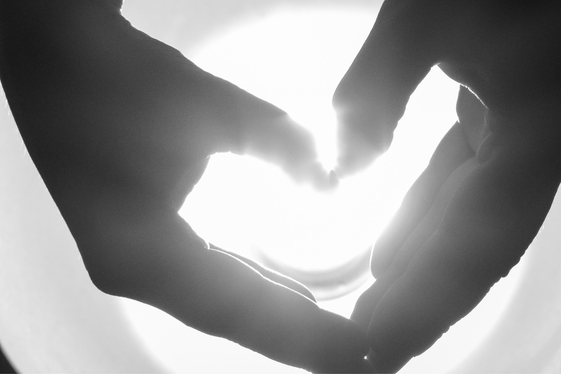 heart hands bw